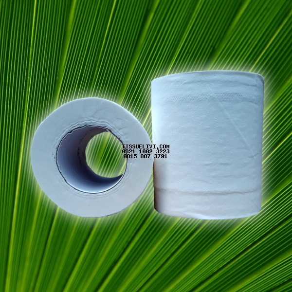 Toilet Roll Unwrapped Livi Smart Due 100 Roll x 205 Sheet / Dus
